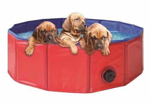 Bazének na zahradu pro osvěžení pejsků