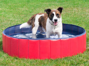 Skládací bazén pro psy Marimex - Ø 100 cm